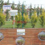 maritza-tel-cit-uzeri-jiletli-telIMG_0389